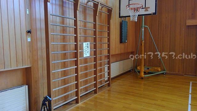 体育館にあるはしごのような登るやつってなんだろうね。