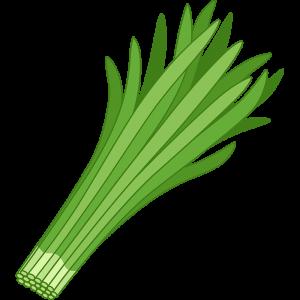 ニラは生で食べれるのかどうか。間違うと食中毒になる植物の話。